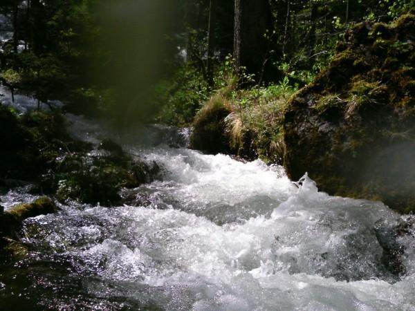 afluent-pe-salza