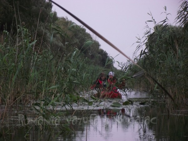 Kayaking Romania Danube Delta