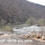 Pe Valea Oltului