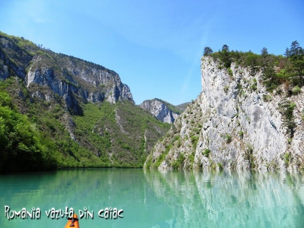 Canion-Drina-Regata-caiace-600x450.jpg