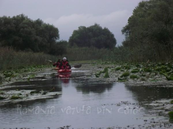 Kayaking in Danube Delta