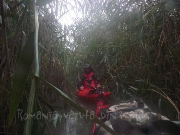 Pe canalele Deltei, in caiac
