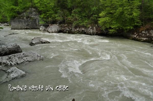 Curs caiac whitewater